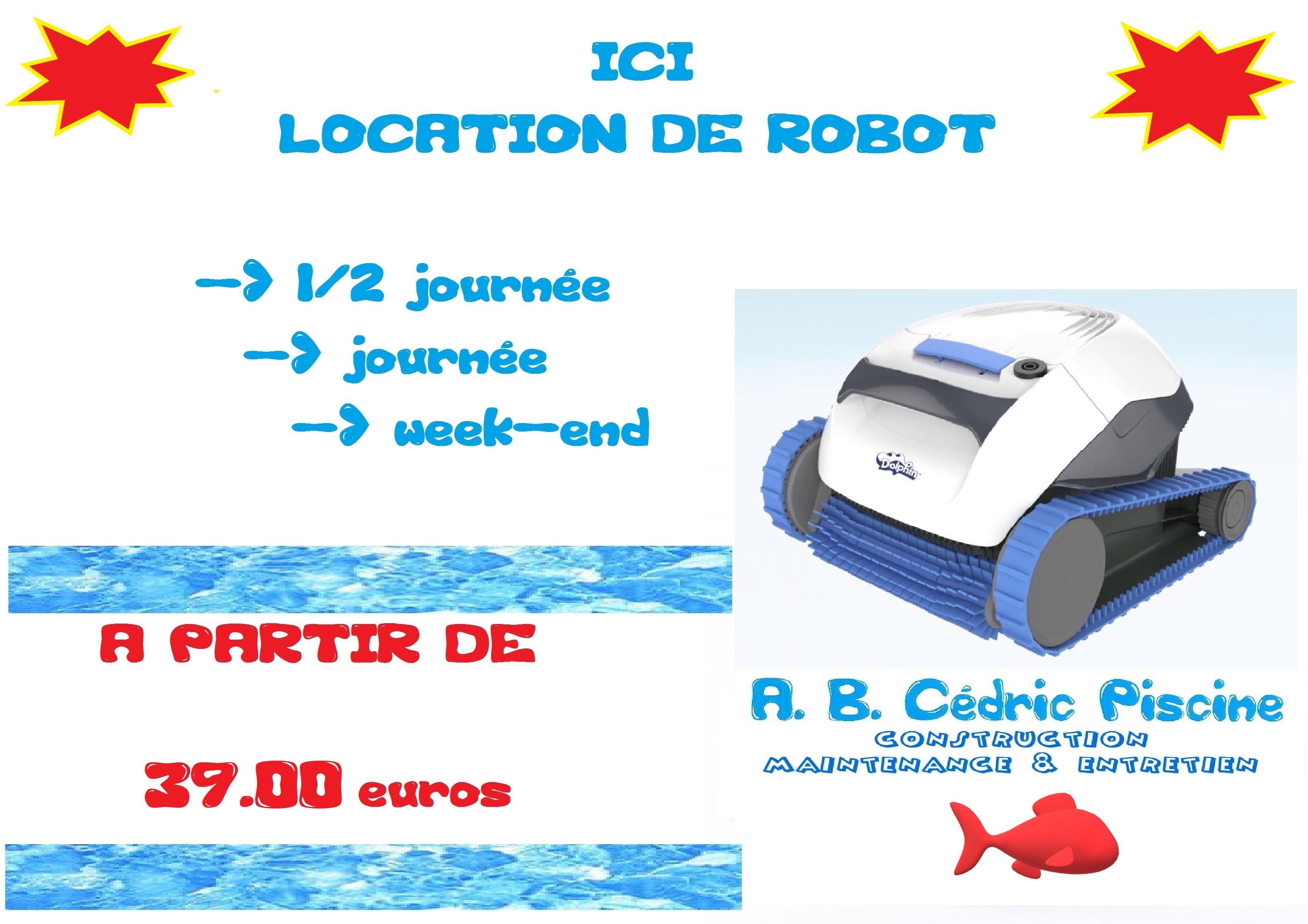 Location Robot électrique